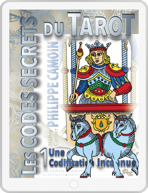 csdt1_fr_cover-ebook_1_5x-8